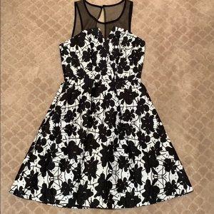beautiful mini dress with mesh top